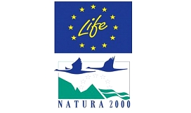 life_in_natura_2
